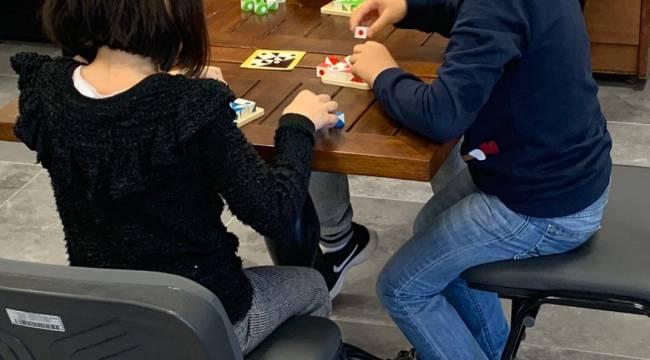 Akıl ve Zeka Oyunları Turnuvası Aliağa'da yapıldı