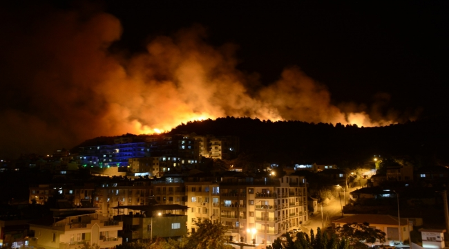 """Dikili'de yangın: """"Ailesine kızdı, sazlıkları tutuşturdu!"""""""