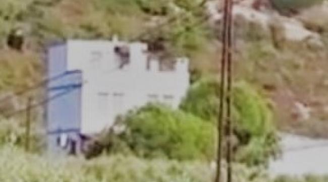 Foça'da korkunç olay: Elleri ayakları bağlı öldürülmüş halde bulundu