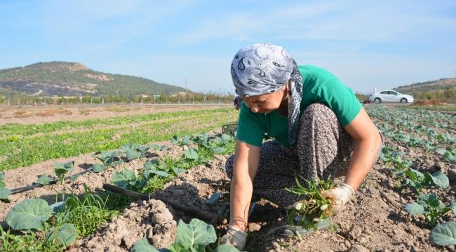 Aliağa Belediyesi'nden Türkiye'nin İlk Toprak ve Tarım Atlası