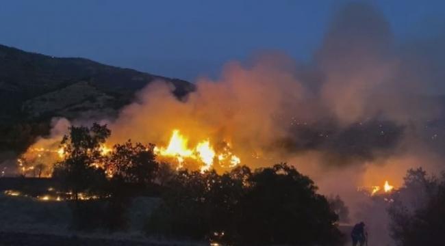 zeytinlik alanda çıkan yangın söndürüldü