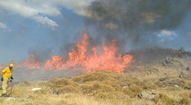 Dikili'de İzmarit yangını araziyi küle çevirdi