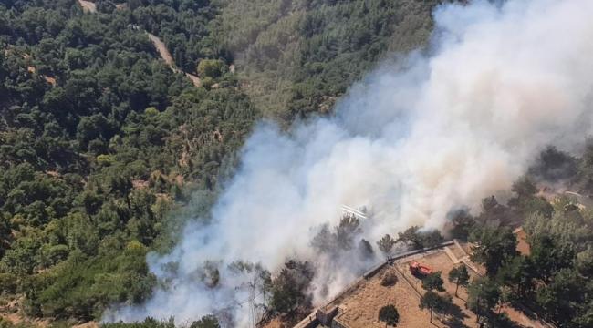 Karşıyaka'da orman yangını